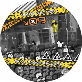 VARIOUS***TEKNO SECTION 09